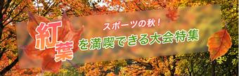 紅葉を満喫できる大会特集